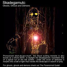 Skadegamutc. Ghost Witch! http://www.theparanormalguide.com/blog/skadegamutc