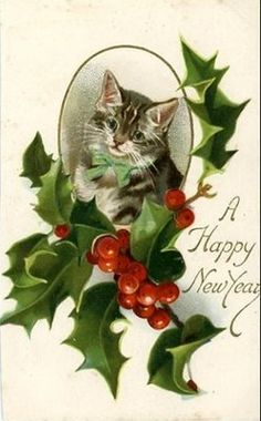 vintage happy new year postcard | just one more new year s cute cat vintage card from vintage holiday ...