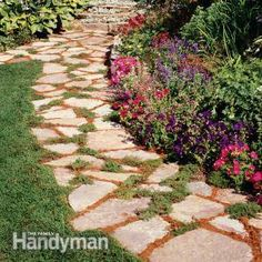 common examples of plants for in between flagstone/pavers: Creeping Thyme, Carpet Bugleweed, Creeping Jenny, Dead Nettle