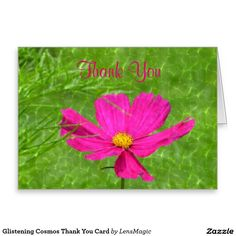 Glistening Cosmos Thank You Card