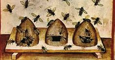 Beekeeping has been a practice going back to ancient times, and during the Middle Ages one could find many farms that kept beehives and collected honey. However, few medieval texts offer indepth information on how this was done. Bee Skep, Bee Hives, Bee Swarm, Black Bee, Wild Forest, Celtic Mythology, Medieval World, Tree Trunks, Dark Ages