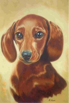 Vintage Dachshund, Arte Dachshund, Dachshund Love, Dachshund Drawing, Daschund, Winnie Dogs, Dog Stories, Dog Rules, Dog Paintings