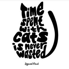 #TuesdayTruth furiends! Shout out to a super cool cat cafe in Charlotte called @mactabbycatcafe (east coasters check them out!)... let me tell you there is so much magic happening in the Cat cafe community right now so much love and high vibes and lives changing it makes me SO DANG EXCITED about whats ahead. Its hard to not get impatient but I have such a clear vision of what is coming to life that every minute getting there is totally worth it. Thank you guys for your support and kind posts…