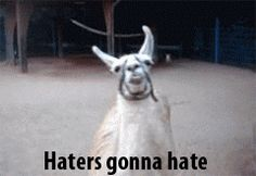 Haters gonna hate.    Like a Llama!! :D
