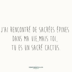 """I've met some thorns in my life, and you are the hell of a cactus. Best Quotes, Love Quotes, Funny Quotes, Inspirational Quotes, Quote Citation, French Quotes, Some Words, Beautiful Words, Sentences"
