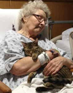 Hospitalized with a broken hip her family smuggled her cat in to her...the two of them show true love.