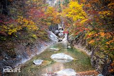 #Fall #Mount Seorak #Seoraksan #Maple #Scenery #iclickart #photo #npine #stockphoto #korea