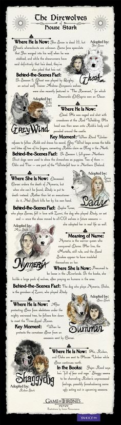 'Game of Thrones': Everything You Need to Know About the Direwolves of House Stark