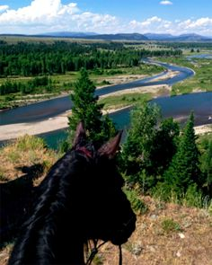 A view of Lost Creek Ranch Wyoming as seen through the ears of a horse