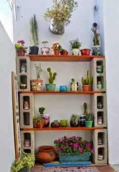 Cute Cactus Decor Ideas For Your Home 10