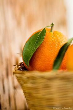 Cyprus Gastronomy Oranges