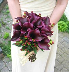 purple cala lilies with red berries