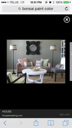 Bonsai paint colour