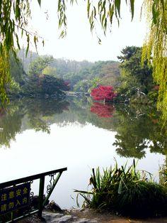 Garden in Hangzhou - Hangzhou, Zhejiang