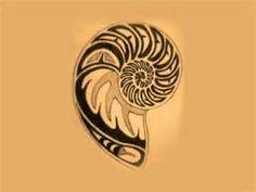 Free Designs  Nautilus Shell Tattoo Wallpaper