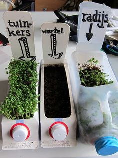 What a fun project! allotment in a bottle 2 de wortel heeft het niet gehaald.the carrot didn't make it. Diy Garden Projects, Projects For Kids, Diy For Kids, Crafts For Kids, Container Gardening, Gardening Tips, Recycled Garden, Home Vegetable Garden, Plantation
