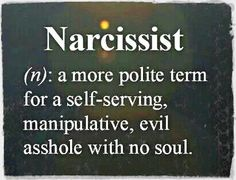 while I wouldn't call you a Narcissist, this is a spot on description
