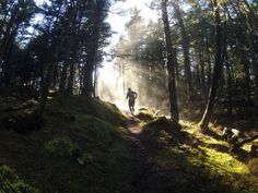 Trail running in late fall. See more photos