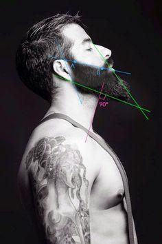 beard lines