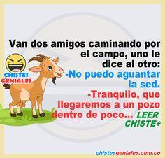 El novio tacaño – Chiste corto – Chistes Geniales Family Guy, Guys, Fictional Characters, Cool Jokes, Short Jokes, Animal Jokes, Goats, Water Well, Country