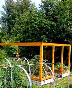 Форум - выращивание томатов, огород, дача - Каркас6