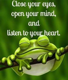"This is fairygodmother frog speaking, ""Close your eyes, open your mind and listen to your heart."""