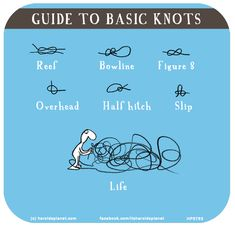 to basic knots David Wolfe, Motivational Quotes, Funny Quotes, Life Quotes, Free Online Cartoons, Knots Guide, Last Lemon, Lol So True, Sarcastic Humor