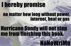 I hereby promise that no matter how long without power, internet, heat or gas Hurricane Sandy will not stop me from finishing this book for NaNoWriMo.    I am made of sterner stuff.