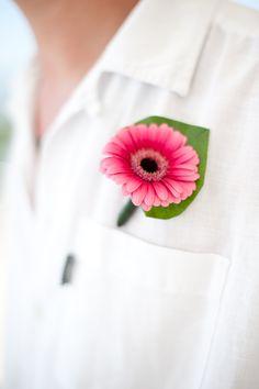 Fuchsia gerbera buttonhole