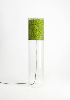 MOSSLIGHT M, a floor lamp which ehnaces the extraordinary structure of the moss. A filtered light release on the table creating a magical atmosphere. Its dimension makes it particularly suitable in medium sized environments such as livingrooms, bedrooms and offices. #design #designgreen #moss #lichen #nature