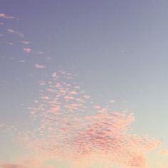45 Best Rose Quartz Serenity Images Colores Colores Pastel