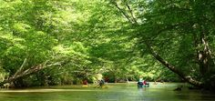 Appalachian Outfitters: Canoe, Kayak and Tubing Trips in North Georgia.
