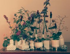 White flower pots. Use for party table decoration.