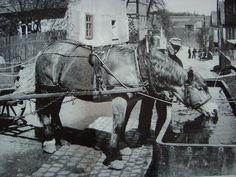 Brunnen Ein alter Laufbrunnen wird von diesem Landwirt als Pferdetränke benutzt.