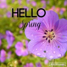 Spring is finally here
