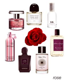 Romantic rose, from classic to modern: Rose Cut, Rose Noir, Dark, Rose Anonyme, Hippie Rose, Attar de Roses, and Roses Musk. #niche #perfume #luckyscent