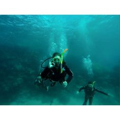 Throwback to scuba diving da Great Barrier Reef - one of da most amazing experiences ever!  #scubadiving #greatbarrierreef #cairns #queensland #australia #qld #discoverqueensland #bucketlist #fun #friends #amazing #nature #naturelovers #love #tbt #takemeback #throwback #throwbackthursday #travel #wanderlust #explore #discover by mkeppie http://ift.tt/1UokkV2