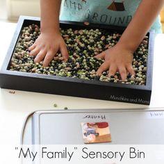 ��My Family�� Sensory Bin