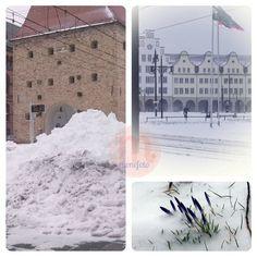 Rostock im frühlingshaften Winter