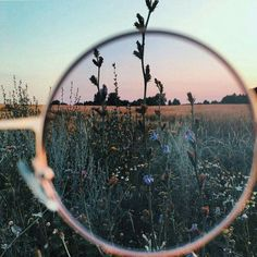 i love artsy pictures i think there so beautiful Artsy Fotos, Artsy Pics, Artsy Picture, Image Tumblr, Belle Photo, Pretty Pictures, Focus Pictures, Aesthetic Pictures, Art Photography