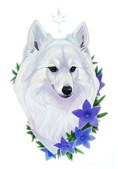 http://mangycoyote.tumblr.com/  beautiful (animal based) illustrations