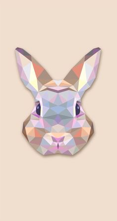 Shade Bunny Iphone Wallpaper Hare Animal Cute Wallpapers Best Mens Apparel