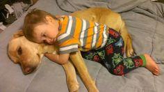 息子と愛犬の友情23