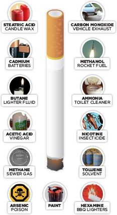 Cigarette Ingredients   Education PD/Health teaching   Pinterest