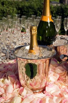 Veuve Cliquot champagne chills in silver ice buckets surrounded with pink rose petals. Champagne Brunch, Champagne Taste, Pink Champagne, Wedding Champagne, Champagne Cocktail, Veuve Cliquot, Wedding Day, Wedding Reception, Destination Wedding