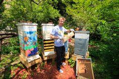 Le Peuple des Abeilles par le photographe Eric Tourneret. Aussi visible sur Apis Cera (www.apiscera.com) Visible, New York City, Bee, Outdoors, Bees, People, Photography, Honey Bees, New York