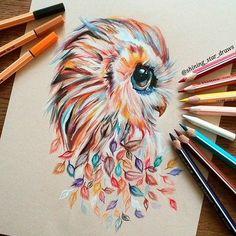 búho tímida en un arte hermoso