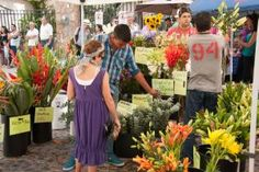 Owners Eder Flores and David Israel have been delivering fresh flowers, arrangements and foliage in Mexico for over fifteen years. After growing sunflowers on the Yucatan Peninsula, they opened their first floral shop in Cancun in 1998. http://www.banderasnews.com/1303/vl-vallarta-old-town-farmers-market-march30.htm