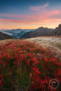 Autumn -  Sunrise - Oberstdorf, Allgäu, Germany - GreatViewsPhotography on 500px