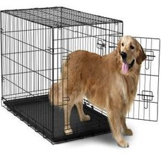 OxGord Dog Crate with Divider, Double-Doors Folding Pet Cage with Heavy Duty Metal Wires and Removable ABS Plastic Tray. Animal Kennel folds into a Carry Case w/ Handle - XXL: x x Black Dog Cages, Pet Cage, Xxxl Dog Crate, Extra Large Dog Crate, Large Dogs, Small Dogs, Crates For Sale, Wire Dog Crates, Animales